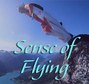 Sense of Flying